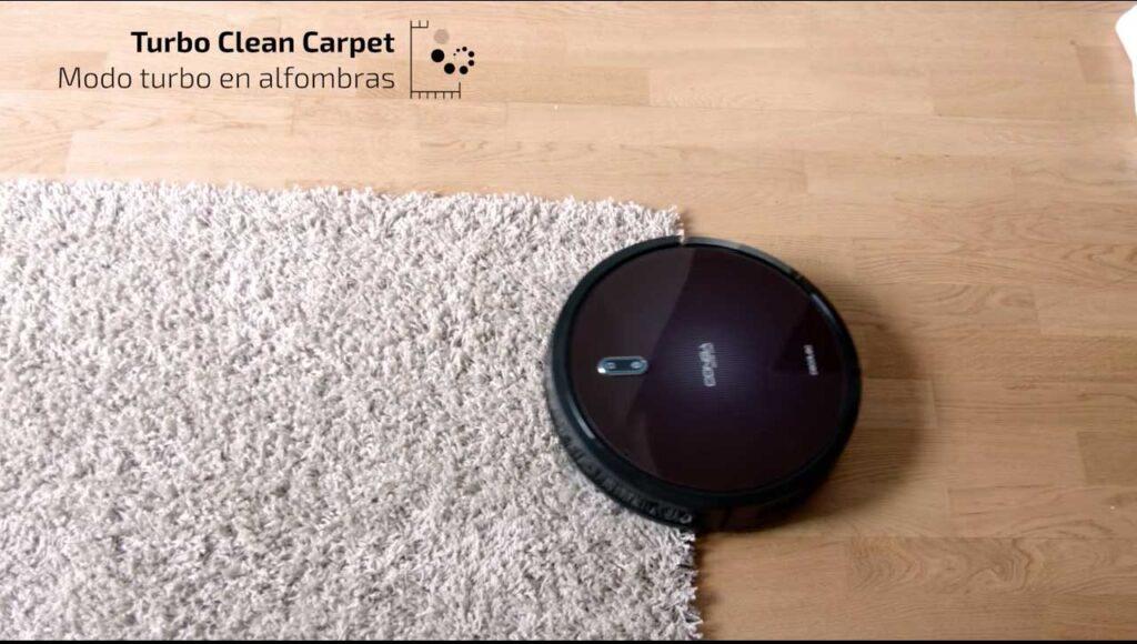 como quitar pelo de gato de las alfombras sin esfuerzo
